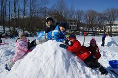 2011.2.5雪像作り1.jpgのサムネール画像