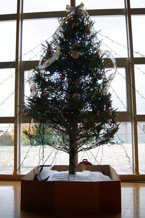 2011.11.22クリスマスツリー.jpg