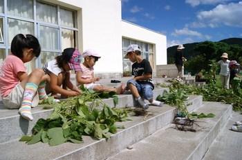 2012.9.12枝豆収穫.jpg