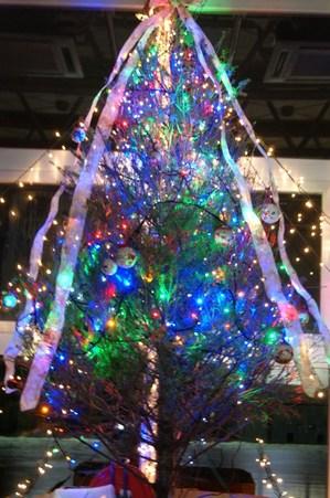 2012.12.3クリスマスツリー.jpg