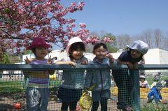 2013.5.31園庭3.jpg