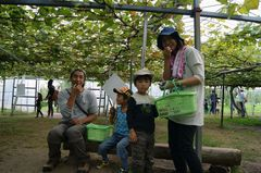 2013.10.2果樹園3.jpg